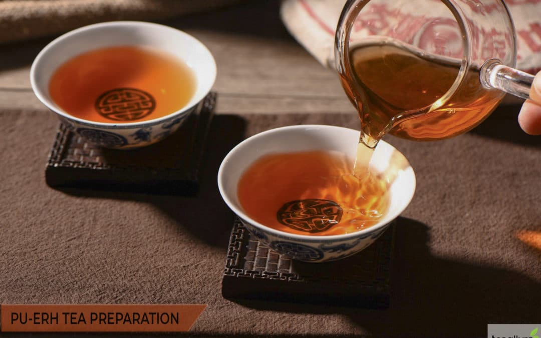 How to Brew Pu-Erh Tea: Preparation and Consummation