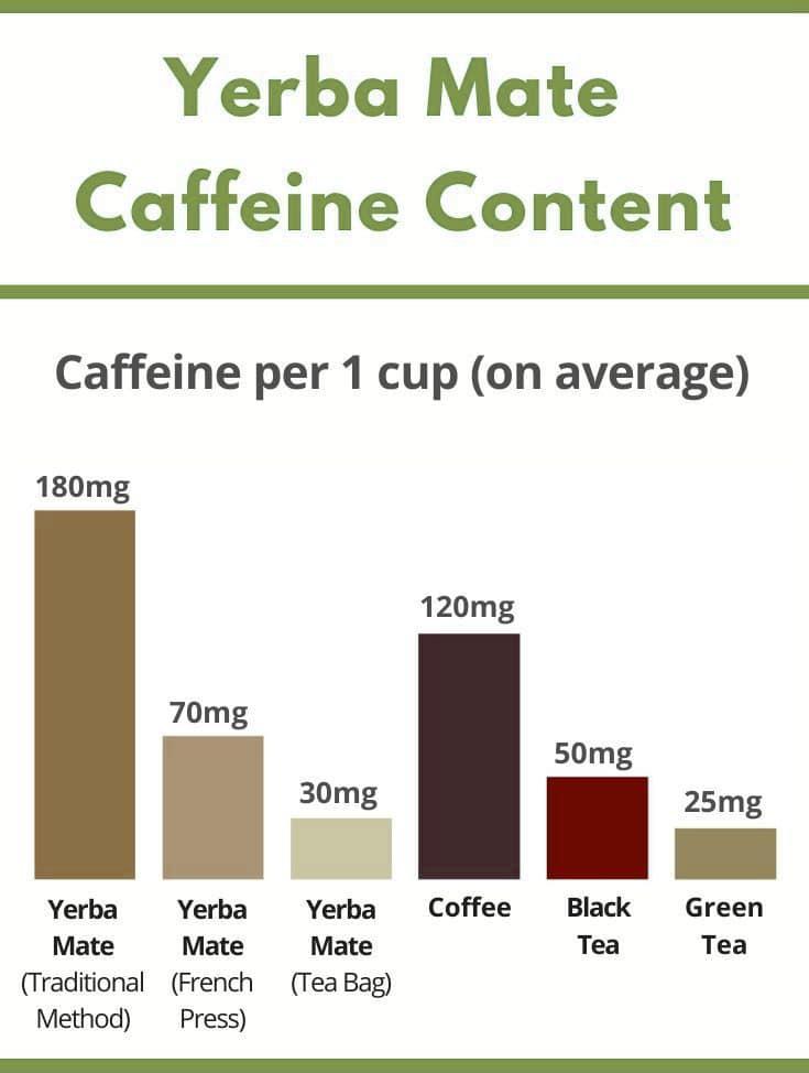 yerba mate traditional method vs. yerba mate french press caffeine content
