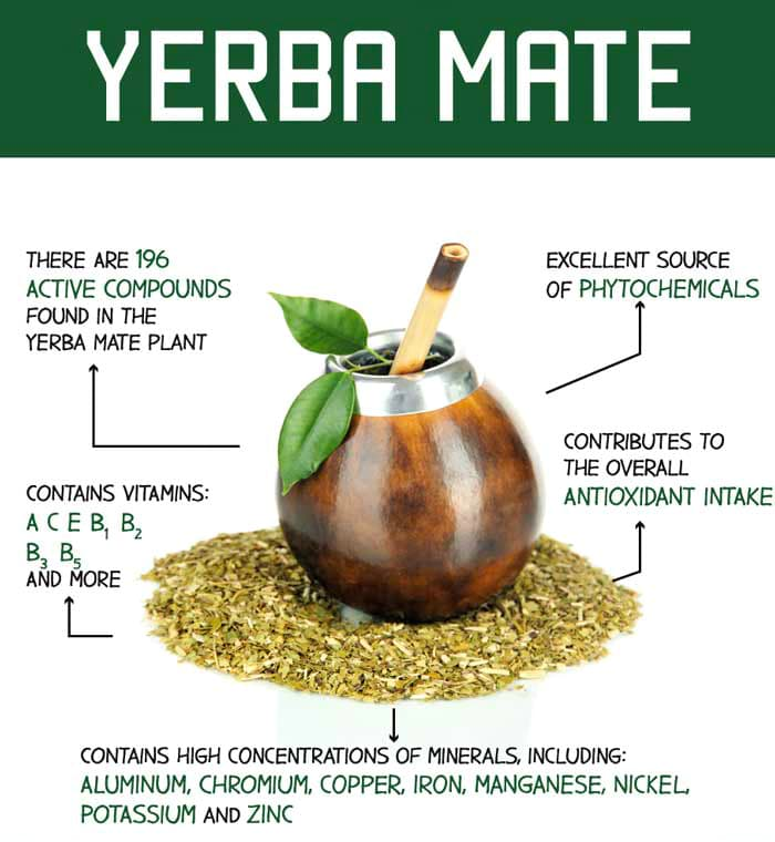 More yerba mate health benefits and antioxidants